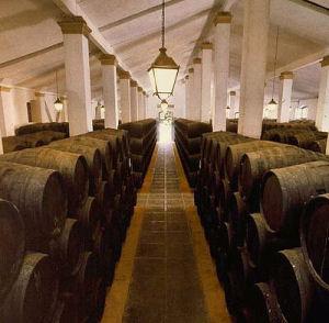 アンダルシアのワイン